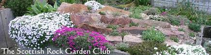 Rock Garden Plants Uk The Scottish Rock Garden Club The International Rock Gardener