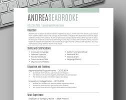 Simple Student Resume Template 127 Best Resume Template For Instant Download Images On Pinterest