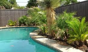 patio u0026 outdoor minimalis tropical pool with tropical plants