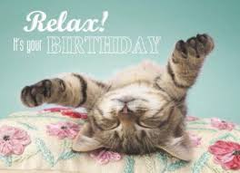 kittens happy birthday meme pets wallpapers