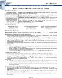Sample Resume Marketing Executive by Senior Advertising Manager Sample Resume 6 Resumes Good Profile