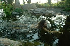 Backyard Swimming Ponds - bullfrog spas