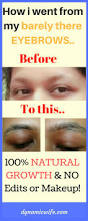 what jamaican black castor oil jbco did to my eyebrows before after