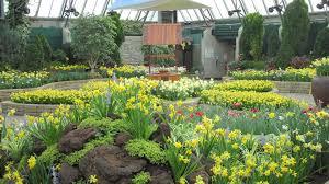 Botanical Garden Definition by Flowers Botanical Garden Year Cancer Society Daffodils