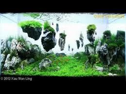 membuat aquascape bening indonesia aquarium