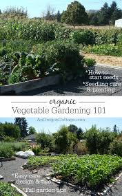 organic vegetable gardening 101 an oregon cottage
