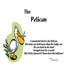 pelican limerick digital art by spencer mckain
