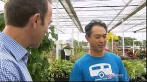 Kings Plant Barn Remuera Kings Plant Barn Viyoutube Com