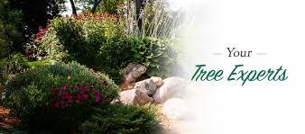 s u0026s tree care u0026 landscaping minneapolis st paul mn a davey company