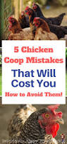 austin backyard chickens 653 best images about chicken coop cool ideas on pinterest