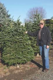 pamplin media group local christmas tree farms offer acres of