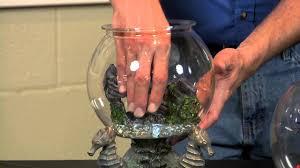 Fish Bowl Decorations Cute Fish Bowl Ideas Aquariums U0026 Fish Tanks Youtube