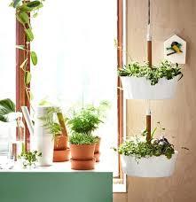 window planters indoor window planters indoor pictures gallery of indoor window planter