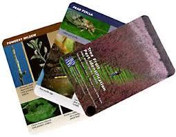 anr catalog anrcatalog tree fruit pest identification and