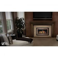 Gas Fireplace Valve Cover by Napoleon Gas Fireplace Insert Direct Vent Fireplace Inserts