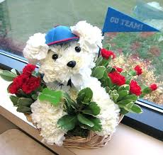 dog flower arrangement dog flower arrangement created by the flower source