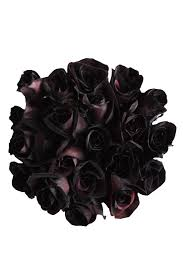 purple roses for sale black roses tinted roses for sale buy black roses flower explosion
