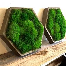 wood frame wall decor a hexagonal 14 reclaimed wood frame by artisan moss green wall