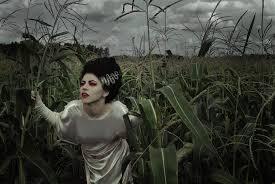Bride Frankenstein Halloween Costume Ideas Halloween Costume Ideas Mallatts