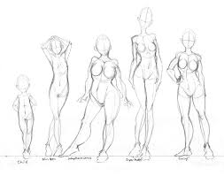 Anatomy Of Women Body Best 25 Body Types Ideas On Pinterest Types Of Body Shapes