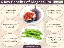 Benefits Of Urban Gardening - 13 amazing magnesium benefits organic facts