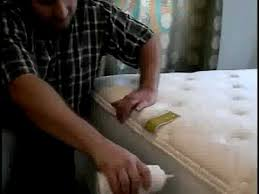 Does Dryer Kill Bed Bugs How To Get Rid Of Bed Bugs So They Don U0027t Come Back Youtube