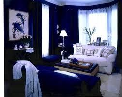 Blue Living Room Home Design Ideas - Blue color living room