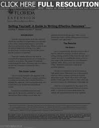 successful resume templates saneme