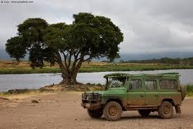 land rover defender safari land rover defender 008031 juzaphoto