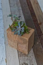 make succulent planters from wood blocks planters plants and