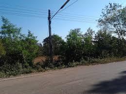 file sakhrai sakhrai district nong khai 43100 thailand