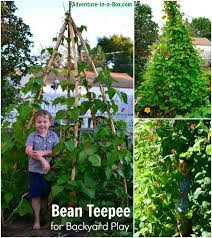Backyard Teepee How To Make A Bean Teepee For Backyard Play Adventure In A Box