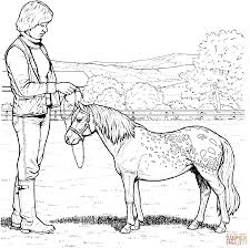 pages horses coloring horse pony ponies glum