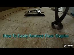 how to easily remove floor staples