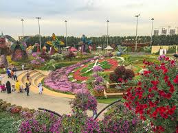 dubai miracle garden must visit place in dubai anna everywhere