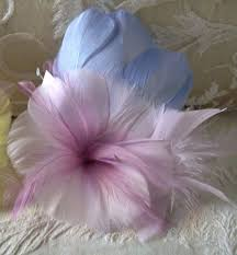 66 best pastel feathers images on feathers