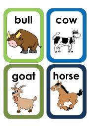 worksheet farm animals flash cards 3