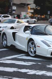 future ferrari enzo 1223 best enzo images on pinterest ferrari car and dream cars