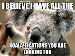 bad joke koala memes quickmeme