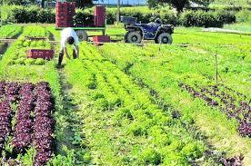 chambre r馮ionale d agriculture pays de la loire d œuvre un accord régional pour intégrer l emploi agricole