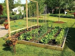Backyard Vegetable Garden Ideas Above Ground Vegetable Garden Ideas Landscape Raised Vegetable