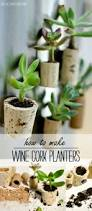 How To Make A Succulent Planter by Wine Cork Magnet Planters