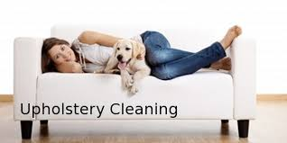 Upholstery Dry Cleaning Products Advanced Dry Carpet Cleaning Petaluma Santa Rosa Sonoma Marin