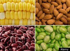 high fiber foods list for a high fiber diet andy u0027s board