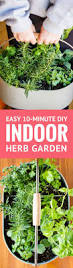 inside herb garden 25 unique herb garden indoor ideas on pinterest growing herbs