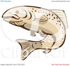 clipart of a rainbow trout fish royalty free vector illustration