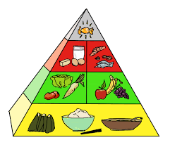 lions in japan yellow red and green foods the japanese food pyramid