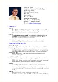 resume format exles styles sle resume templates resume templates you can