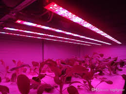 hydroponic led grow lights sell indoor hydroponic lights 28 8w smd 5050 rigid led strips