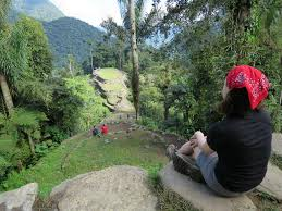 Sleep Number Bed Commercial In The Jungle Mud Sweat And Coca Leaves A Jungle Hiker U0027s Trek To Colombia U0027s